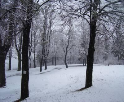 Zima na Kaplicówce